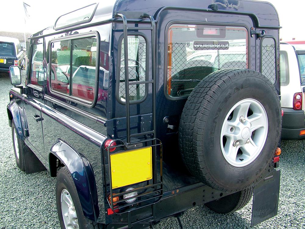 Land Rover Defender Rear Access Ladder Light Guard