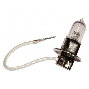 100w Bulb for DA4088 / S6013 Lights